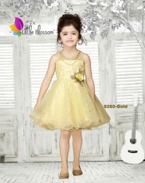 9260-Gold